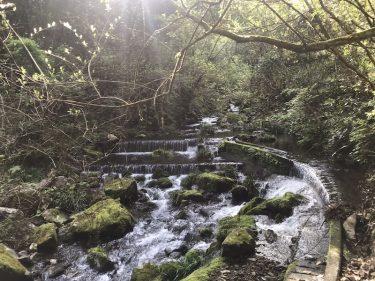 【村のおしごと】田役・水路の掃除