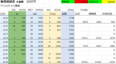 【農家って儲かる?】ししとう農家の1年間の売上公開・結果発表2020!!